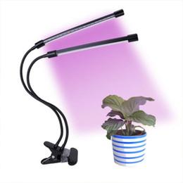 Apparecchio di tempra dimmerabile Light Clip Plant Light Double Plant Fill Fill Light Nero Adatto per interni da controller di gioco usb fornitori