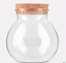 Nuevo jarrón de diseño online-La nueva llegada linda del té del diseño del café azúcar cristal Botes flor de la planta del florero del crisol Inicio la decoración del partido de belleza transparente