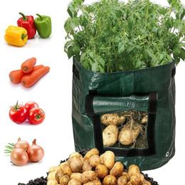 crescer saco jardinagem Desconto DIY Potato Grow Planter PE pano Plantio Container Bag Vegetable Gardening Jardineria Thicken Jardim Pot Plantio crescer Bag