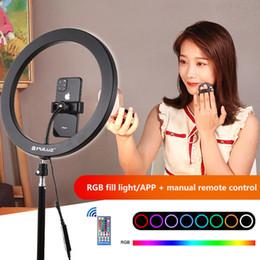 ring speedlite Sconti PULUZ 9 pollici RGB record di anello di LED dimmerabili luce autoscatto video con gli stivali freddi treppiedi testa a sfera e la clip di telefono