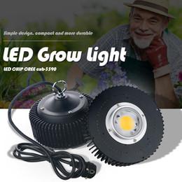 Lâmpadas originais on-line-Original Cree COB CXB3590 CXB 3590 LED Crescer Luz 3000k 3500k Full Spectrum LEVOU Crescente Lâmpada Para O Crescimento Da Planta Interior LEDLighting