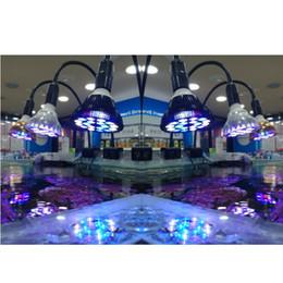 modifique para requisitos particulares libre llevó la luz del acuario de peces mascota iluminación bombilla crece la planta lámpara de 54W para el tanque de agua salada marina de arrecifes de coral del colector de aceite de algas desde fabricantes