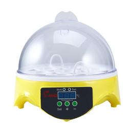 Mini LCD Digital Brutkasten Ei Schlüpfen Sensor Feuchtigkeit Hygrometer m UK