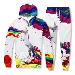 Бедро лошади онлайн-2017 New Fashion 3d Hooded Sets Print Horse Unicorn Spray Paint Hip Hop Funny 3D Sweatshirt +Sweatpants Tracksuit Set