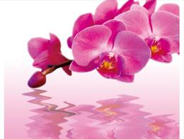 2019 décor de reflets Papel de parede Personnalisé 3d photo murale papier peint décor à la maison Phalaenopsis eau fleur réflexion fleur floral murale arrière plan sticker mural décor de reflets pas cher