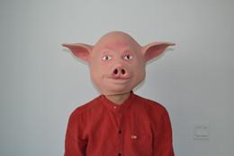 Gummi-schweinkopf online-Gruselige Schwein Kopf reinigen Halloween Maske Gummi Streich Kostüm Neuheit Phantasie Maskerade Parteien, Geschenke