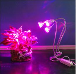 La lámpara LED para el crecimiento de las plantas 5W 10W 15W en maceta para interiores, multi-planta, lámpara de suplemento de luz, Grow Lights desde fabricantes