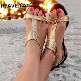 b07b2219d REAVE CAT Sandals for woman Summer shoes PU Buckle T-strap Gold Silver Plus  size 34-43 Crocodile pattern Flat Casual Cute A1818