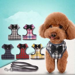 ha condotto il petto del collare del cane Sconti Collari per cani da compagnia Imbracatura e guinzagli Set di giubbotto di nylon Cucciolo di piccola taglia Accessori per gatti Accessori per cuccioli Gilet per cuccioli