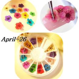 3d цветочный дизайн ногтей онлайн-Колесо 12 Цвет сушеный сухой 3d Цветочные советы Nail Art Украшение Дизайн Маникюр Diy