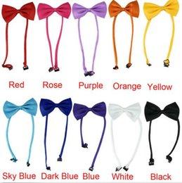 vêtements chihuahua pour hommes Promotion Cravate en gros pour chien Cravate de chien Cravate de chien Cravate de chat Animaux de toilettage Fournitures Multicolore peut choisir