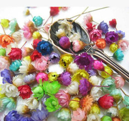 epoxy resin for jewelry Coupons - 100pcs Mixed Colors Mini Dried Daisy Flower Head For Epoxy Resin Pendant Necklace Jewelry Making Craft DIY Accessories