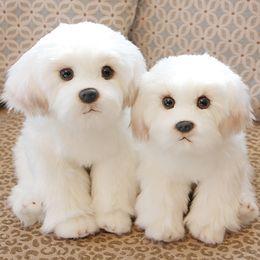 Cachorros brancos on-line-Bonito Pequeno Branco Bichon Frise Filhote de Cachorro De Pelúcia Brinquedo De Pelúcia Simulação Pet Fofo Bebê Boneca Presente De Aniversário para Crianças Foto Prop