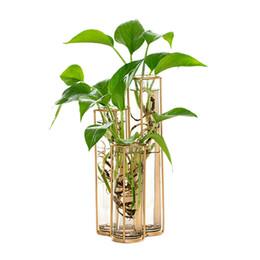 2019 moderno tubo di vetro bottiglia di vetro per la pianta del fiore diy decorazione della casa terrario idroponica verde vaso contenitore di vetro vaso da