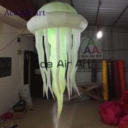 Licht ace online-Blinkende aufblasbare Quallen des eben kundenspezifischen freien Verschiffens, die durch Ace Air Art. Beleuchten