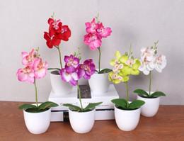 2019 orquídeas, potes 20 Conjunto phalaenopsis vaso de flor de orquídea artificial + folha de espuma + vaso de simulação de plástico flor casa de natal decoração bonsai presente orquídeas, potes barato
