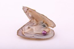 Argentina JNMM Oyster de perlas de agua dulce con una sola perla redonda 6-7 mm Buena calidad Colores mezclados Accesorios de joyería Regalo de fiesta para niños Suministro
