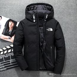 Sombreros de ganso abajo online-ropa de invierno nueva chaqueta The North Hombres Parka Warm ganso abajo cubre Shell suave cuello de piel gruesa sombreros al aire libre ropa de abrigo chaquetas cara