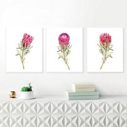 affiches de fleurs roses Promotion Aquarelle Roi Protea Affiches et posters Peinture sur toile fleur rose, style nordique, mur scandinave Photos pour le salon