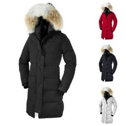 2019 vestes à col montant imperméables DHL Livraison Gratuite 2019 Hiver canada manteau Femmes Épais De Mode À Capuche Veste En Dos Slim Veste D'hiver Veste
