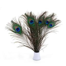 Belle décoration plumes de paon multicolore 100 pcs ? partir de fabricateur