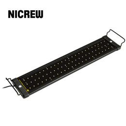 Lámpara de luz Nicrew 50-68cm del acuario del LED de iluminación del acuario con soportes extensibles 60 y 12 LEDs blancos adapta azules para el acuario desde fabricantes