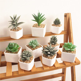 Argentina 2019 plantas suculentas cactus adornos creativos artículos de moda para el hogar de seda artificial plantas de simulación de flores con maceta cheap silk succulents Suministro