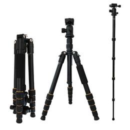 Deutschland Q666 Professionelle SLR / DSLR Kamera Stativ Kugelkopf Ständer Halter für Canon Nikon cheap dslr camera holder Versorgung