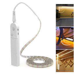 Tiras de 3 m on-line-Sensor de movimento LEVOU Luz Do Armário 1 M 2 M 3 M Sob a Escada Da Cama Guarda-roupa Da Lâmpada Fita À Prova D 'Água 5 V USB CONDUZIU a Luz Do Armário Da Tira Da Noite