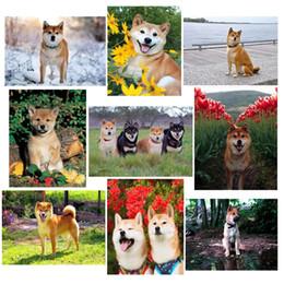quebra-cabeça de diamante Desconto Imagem de strass, cão Shiba Inu, DIY, completa, pintura Diamante, quebra-cabeças de mosaico, Animais Diamante Bordado cão, decoração da casa JS4155