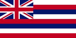2019 confeti de plata al por mayor 3FT * 5FT Bandera Estadounidense del Estado de Hawái 3x5FT Bandera Estadounidense de Hawaii Bandera de Poliéster Manga Blanca y dos Ojales