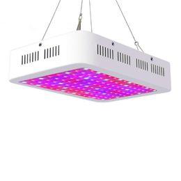 LED Grow Light, 1000W1200W 1500W 2000W Planta de interior Grow Lights Full Spectrum con UVIR para Veg y Flower desde fabricantes