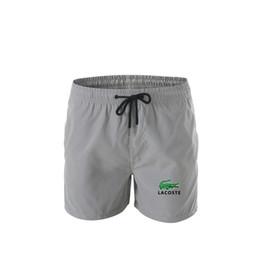 2019 pantalones de cocodrilo Cocodrilo Logo Designer 2019 Pantalones cortos para hombres Estampado de sarga Deportes recreativos Pantalones de playa de alta calidad Traje de baño Letras de hombre Surf Life Hombres pantalones de cocodrilo baratos