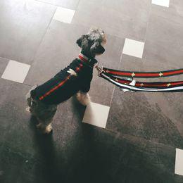 Wholesale Designer Dog Collars Leashes for Resale , Group