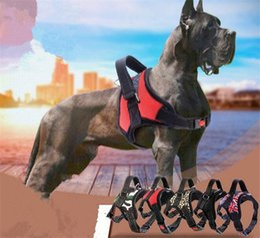 collier de chien harnais pour chiens animaux accessoires harnais collier de chien collier de chiot pendentif pour animaux collier de poitrine pour animal domestique G455 ? partir de fabricateur