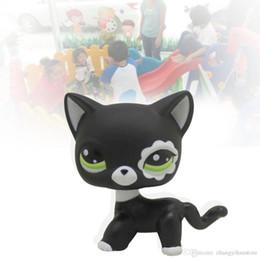 2017 Nueva tienda de mascotas juguetes raros negro pequeño gato ojos azules modelos animales patrulla canina figuras de acción juguetes para niños de regalo desde fabricantes