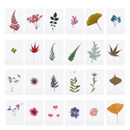 epoxy resin for jewelry Coupons - Mix Pressed Flower Leaves Plant Specimen Fillers for Epoxy Resin Jewelry Making