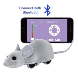 2019 bluetooth spaß Spaß Mäuse Haustiere Katzenspielzeug Kinderspielzeug Telefon App Steuerung Maus Elektronisches Bluetooth Drahtloses Training Kätzchenspielzeug rabatt bluetooth spaß