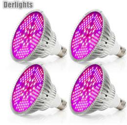 Canada 4pcs / Lot 100W LED élèvent le spectre complet léger AC85 ~ 265V E27 LED croissance de la lampe de plante ampoule LED pour les légumes à fleurs de serre intérieure Offre