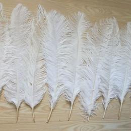 20Pcs Real Natural Plumas De Avestruz 12-14 in para Decoraciones de Boda Gris
