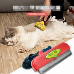 Incontri online gatti battaglia