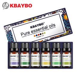 Oli essenziali per diffusore, olio per aromaterapia Umidificatore 6 tipi di profumo di lavanda, tea tree, rosmarino, citronella, arancio da