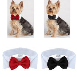 Traje de pajarita roja online-Hermoso Perro Gato Pajarita Novio Esmoquin Disfraces Mascota Perros Corbata Accesorios de Boda Grooming Red Bowtie Pet Supplies
