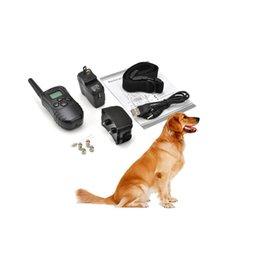 2019 collari di cane scioccante Ricaricabile Impermeabile Pet Dog Training Collar Shock Vibrazione LCD Telecomando per 2 Cani 300m 100LV 10843 per Cani Animali domestici collari di cane scioccante economici