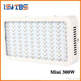 2019 natrium-glühbirnen Beste 100X3W Hydro wachsen LED Vollspektrum Spitzenwert 9-Band 300w Hydroponic LED wachsen Lichter mit 100% echtem 630nm UV-IR