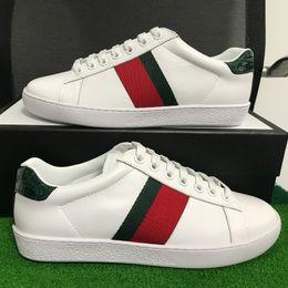 Luxusmarken Männer Frauen Freizeitschuhe Designer Turnschuhe Grün rot Streifen ACE Turnschuhe Mode Schuh mit Top-Qualität aus echtem Leder mit Box von Fabrikanten