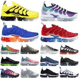 2019 Black Metallic Gold TN Plus Men Designer Shoes Rainbow Bumblebee Persian Violet Triple Black Women Shoes Sport Running Sneakers