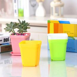 Insieme all'ingrosso del vaso online-Commercio all'ingrosso 300 set di fioriere bonsai in plastica tavolo mini piante grasse pentole e piatto vaso da giardino quadrato vaso di fiori colorato LX6363