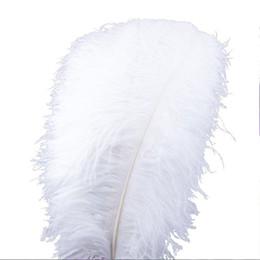"""Penas de avestruz de 55 cm on-line-20 ~ 22 """"(50-55 cm) Penas de Avestruz Partido Decoração de Mesa Centrais De Casamento Acessórios de Cozinha Acessórios de Decoração Para Casa Acessórios de Pano Do Partido das crianças"""