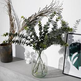 2019 feuilles vertes en plastique Plantes Artificielles Doux En Plastique Eucalyptus Plantes Vertes branche Home Decor Faux Plante Feuilles De Mariage Décoration Simulation Bonsaï LJJA3052 promotion feuilles vertes en plastique